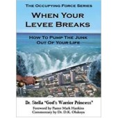 When Your Levee Breaks:How to Pump the Junk Out of Your Life